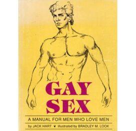 afbeelding gay sex - boek