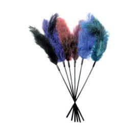 afbeelding Struisvogelveren kietelaar